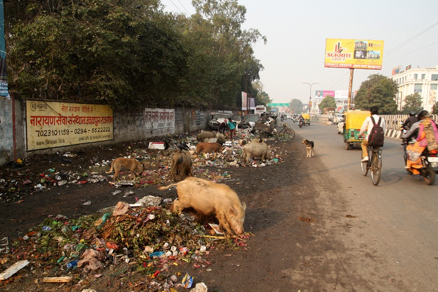 2015-02-04 to Kanpur 001 (res)
